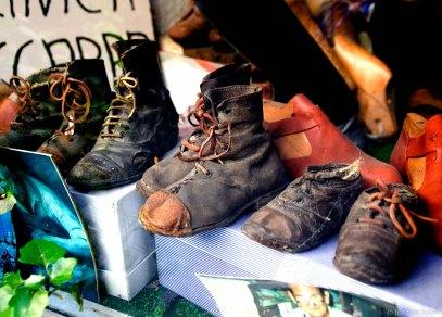 Voltera Shoes